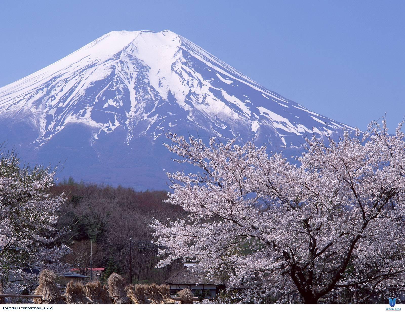 TOKYO – NÚI PHÚ SĨ – OSAKA – NAGOYA